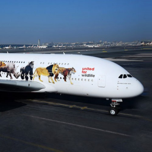 Emirates' super jumbo message against illegal wildlife trade