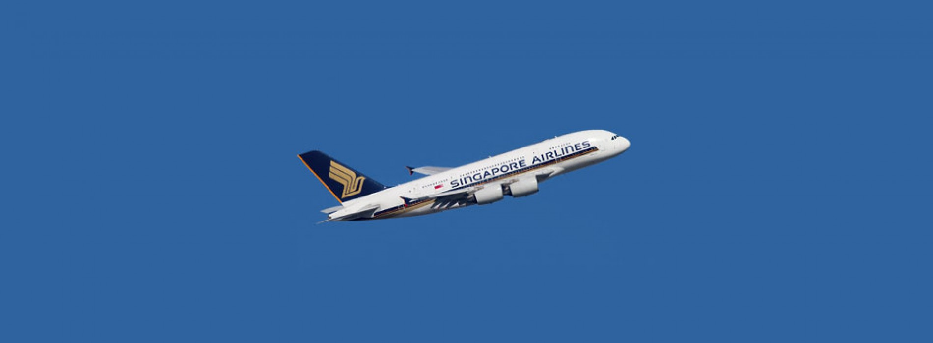Singapore Airlines to link Canberra and Wellington with new route