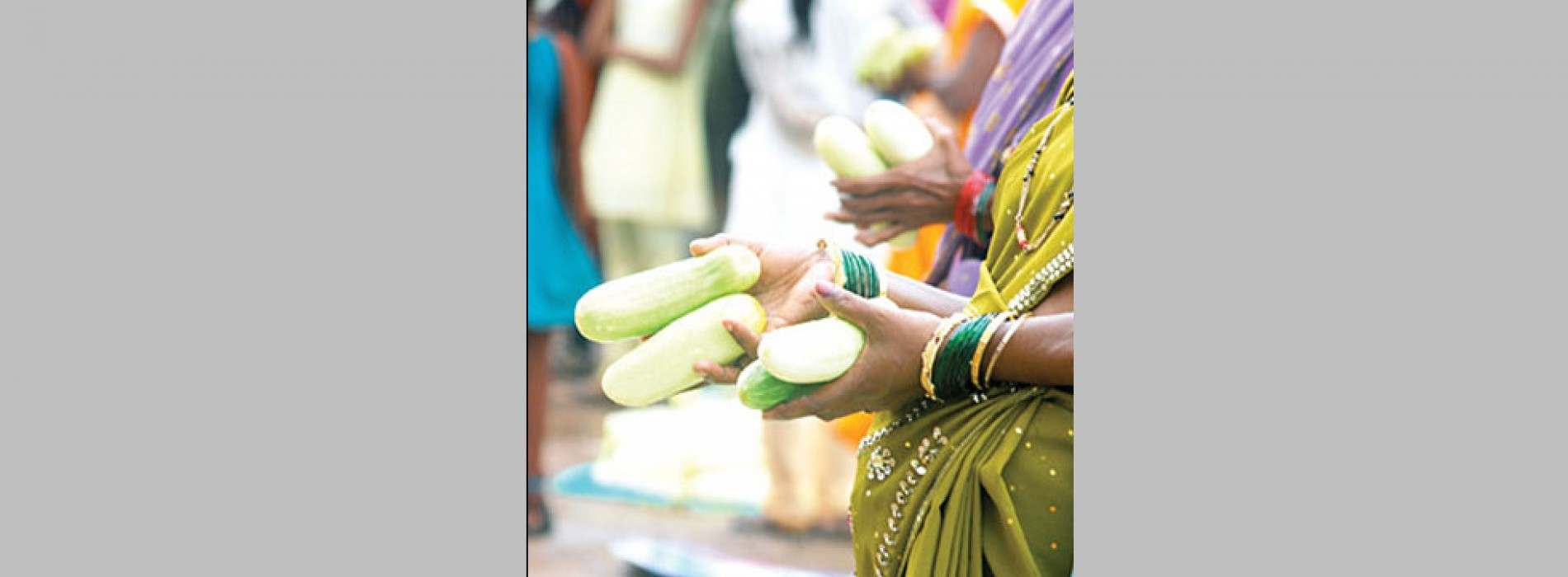 Head to Goa for Touxeachem Fest or Cucumber Feast