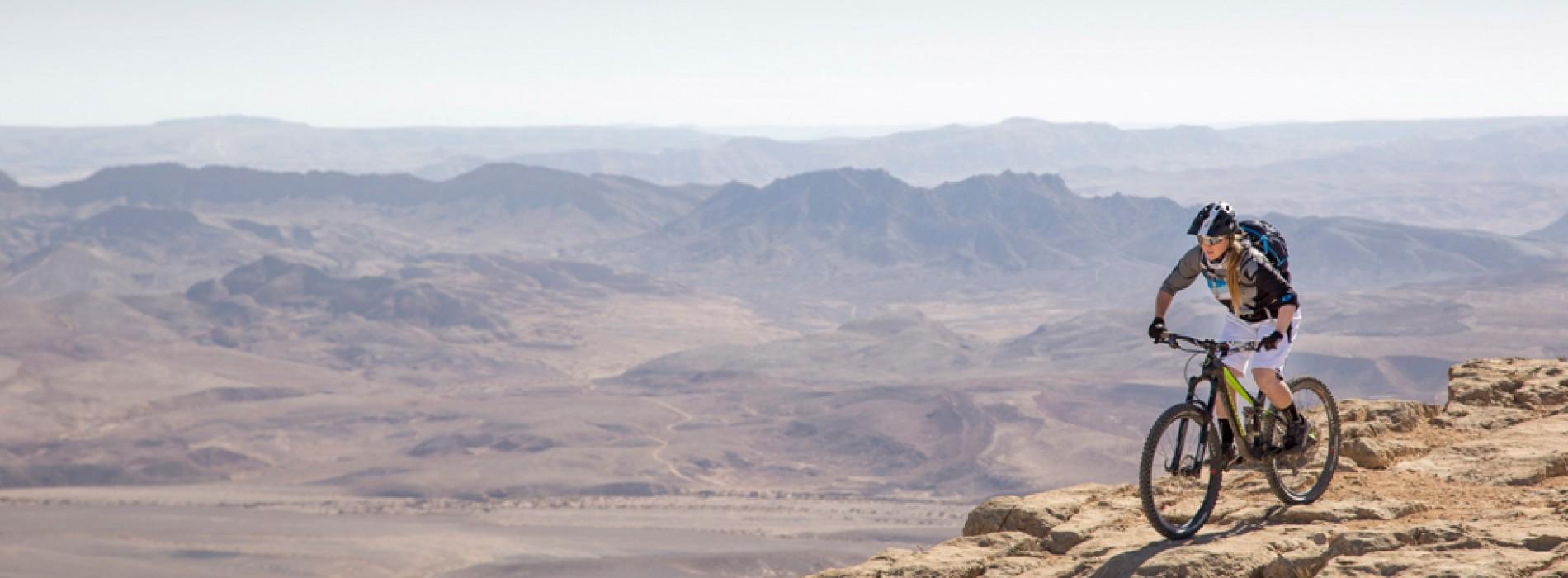 Paramount Negev of Israel