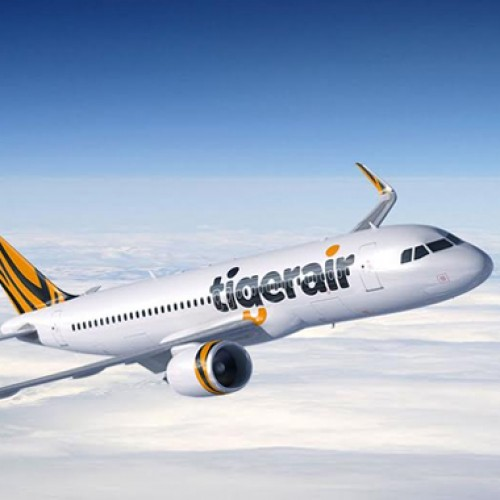 Tigerair offers special fares this festive season