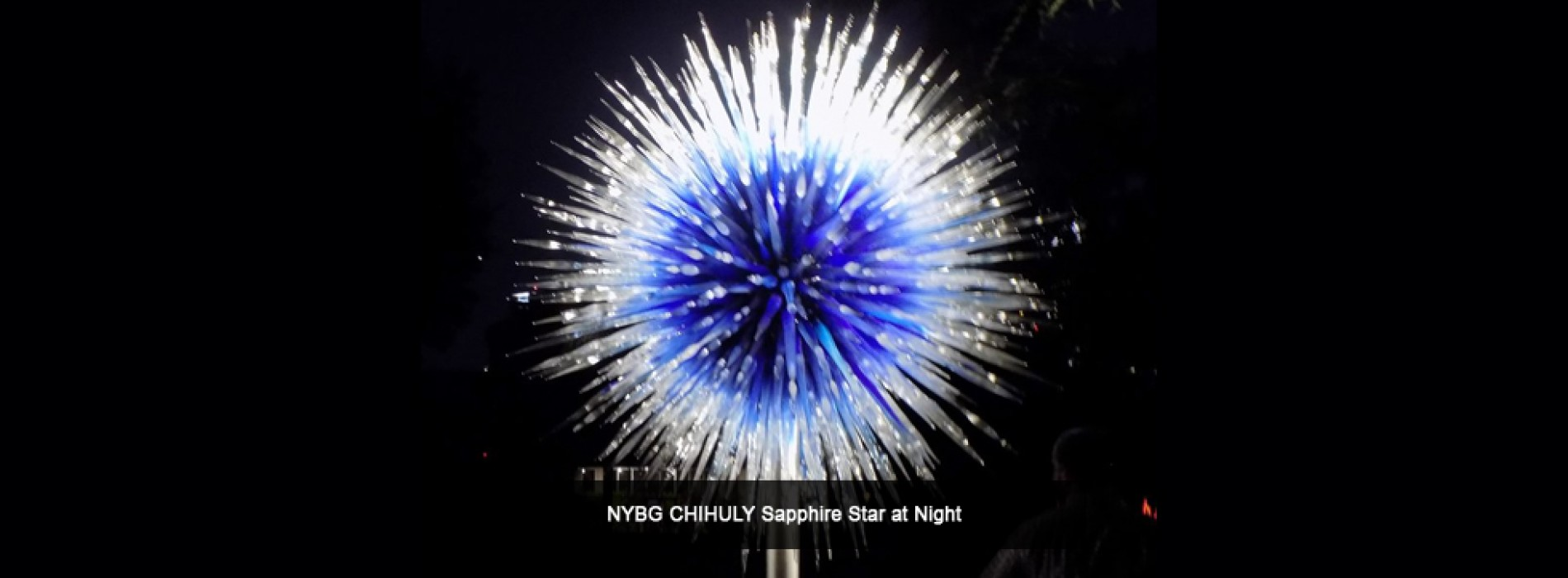 New and exciting CHIHULY experience to debut in New York in Spring 2017