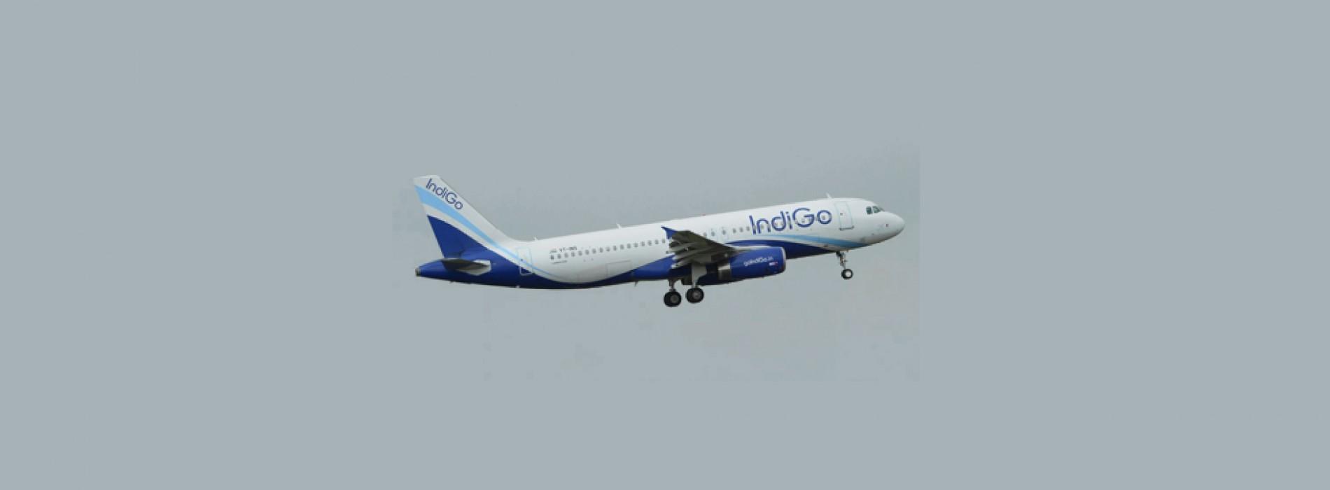 Bureau of Civil Aviation Security suspends IndiGo's security training centre licence