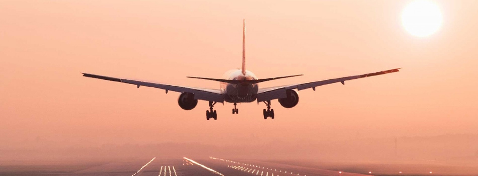 Low-cost carriers to remain profitable says Aviation report