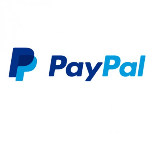 PayPal eyes growth in India's booming travel and tourism sector
