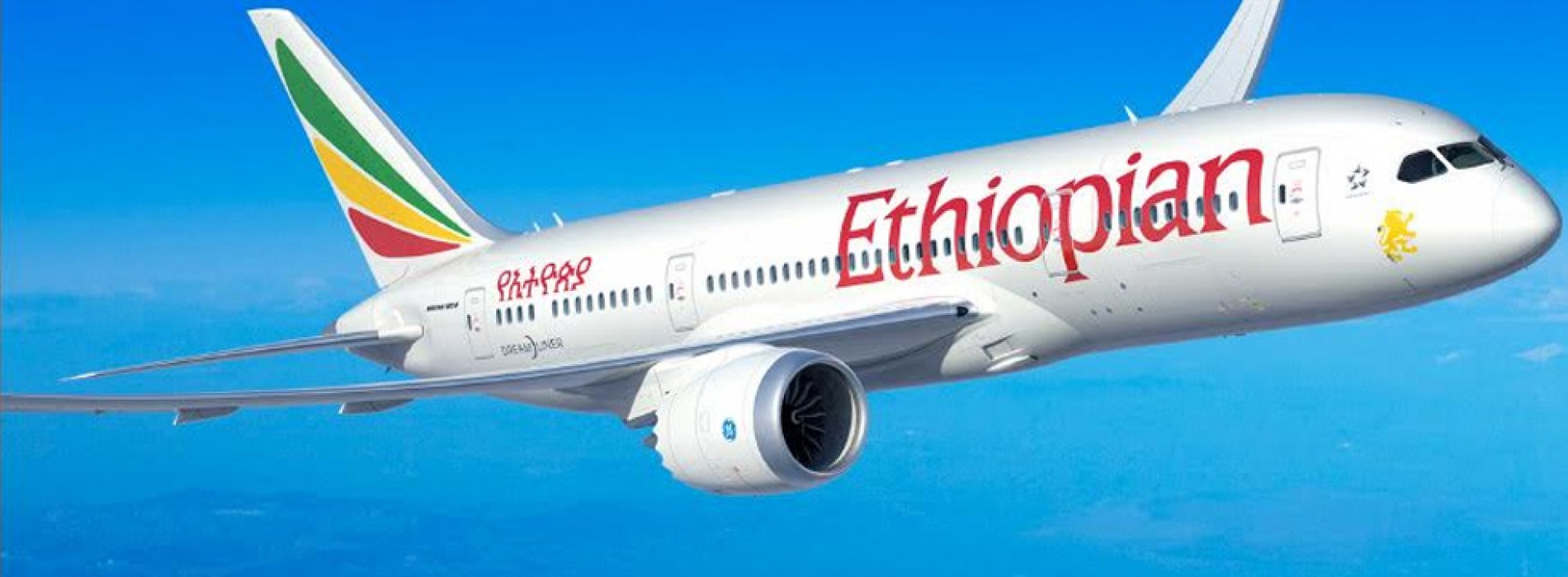 Ethiopian Airlines wins 'Cargo Airline Award for Network Development' at Brussels