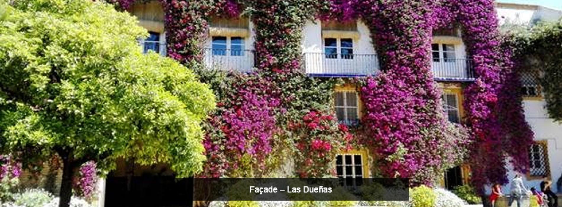 Palacio de las Dueñas – Home of a Seville Icon