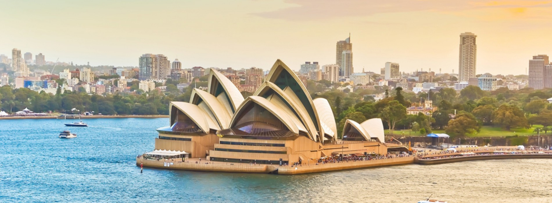 Australia and New Zealand: going down under in the Land of the Kiwis!