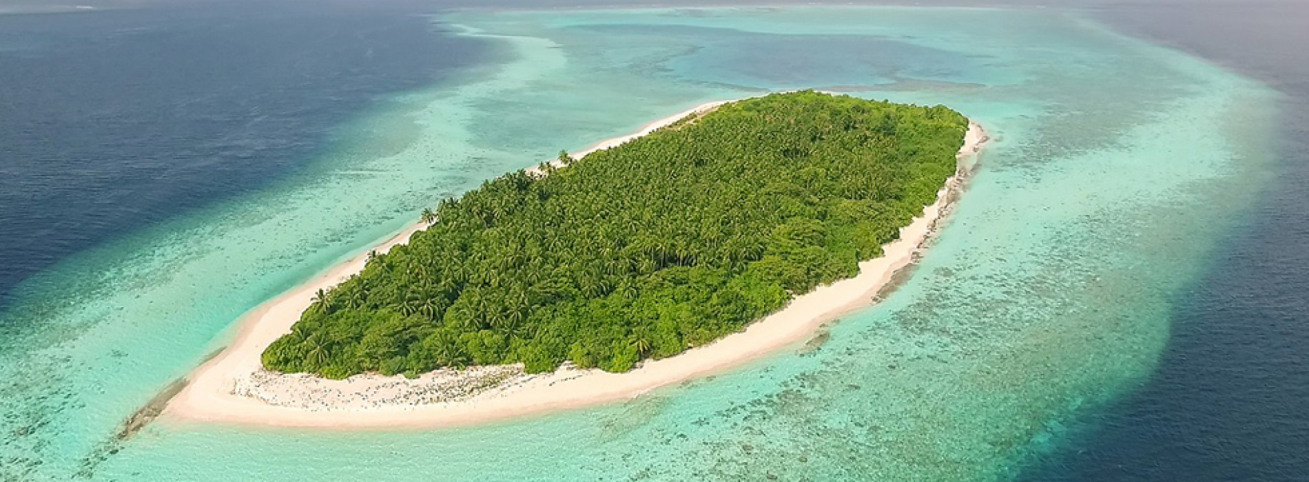 AVANI to debut in the Maldives with development of AVANI Fares Resort