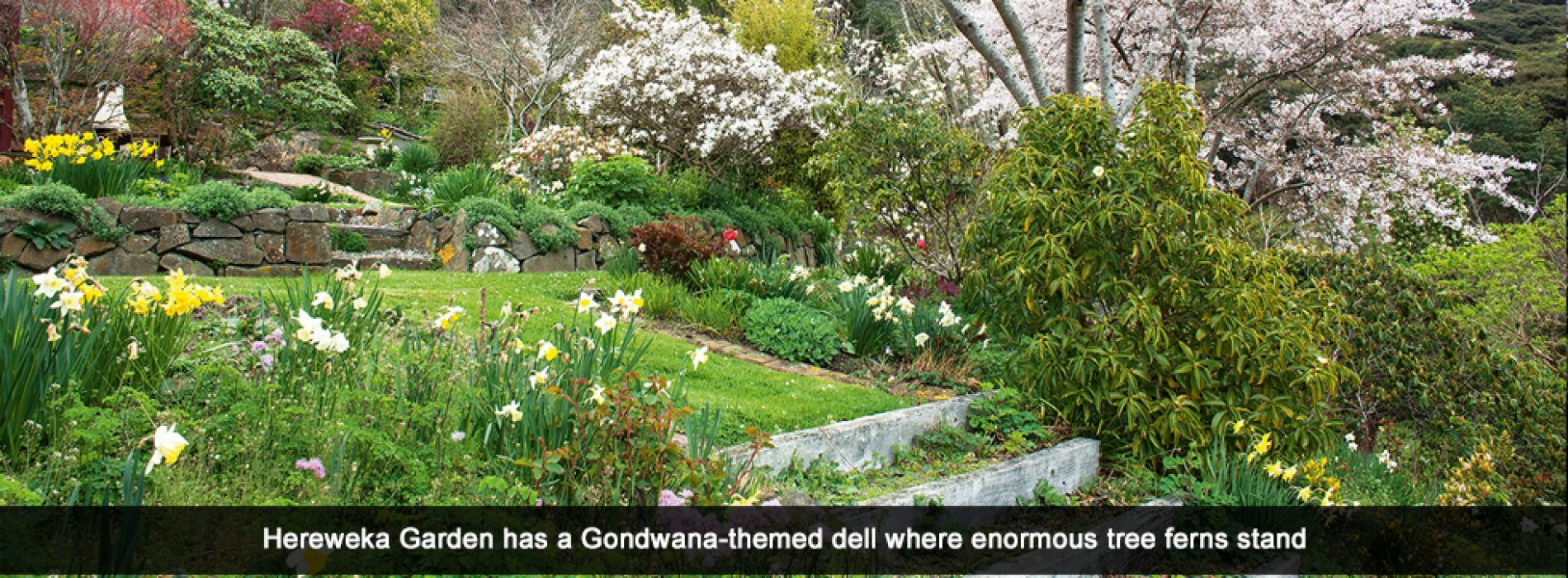 Solitude and sanctuary in the glorious gardens of Aotearoa NZ