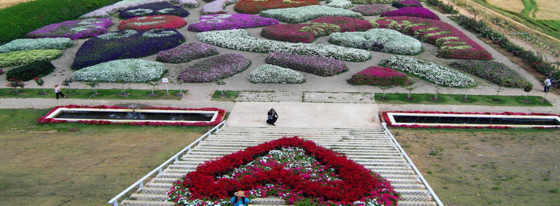 Thailand's Flora Park Festival welcomes visitors with flower displays and floral spectacles