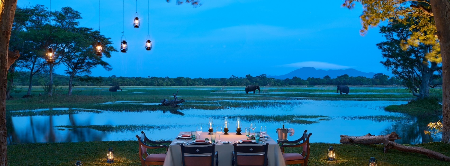 Cinnamon Hotels & Resorts launches a luxury wedding service for destination weddings in Sri Lanka