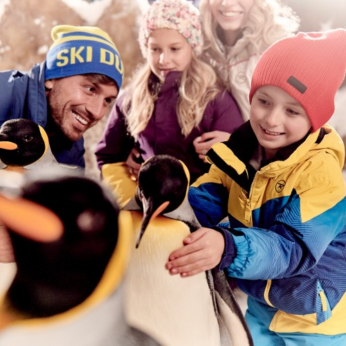 Ski Dubai celebrates over Six Years of Snow Penguins