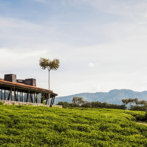 One&Only Nyungwe house to open in Rwada in October